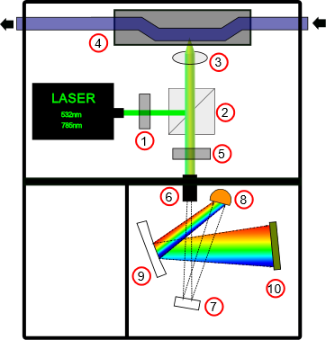 Figure 1. Scematic diagram of proposed Raman spectrometer.